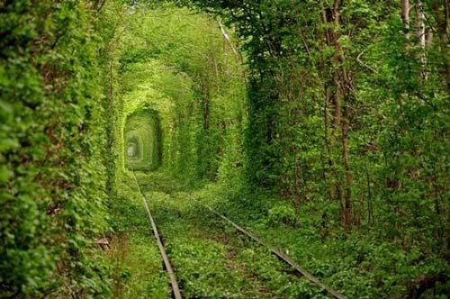 «تونل عشق» در شهر کلون اوکراین